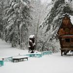 Зимний отдых на Увильдах - Лесная Сказка (14)