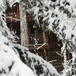 Зимний отдых на Увильдах - Лесная Сказка (2)