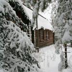 Зимний отдых на Увильдах - Лесная Сказка (31)