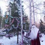 Зимний отдых на Увильдах - Лесная Сказка (4)