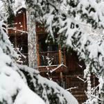 Зимний отдых на Увильдах - Лесная Сказка (8)